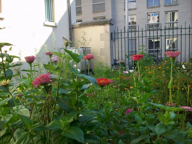 jardin des colibris