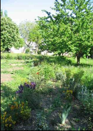 Jardin r seau sant le passe jardins for Le jardin 69008 lyon
